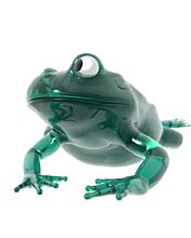 frog_jpfdpf5p
